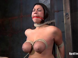 Routh tits torture and pussy poking off out of one's mind Claire Adams for Dana Vixen